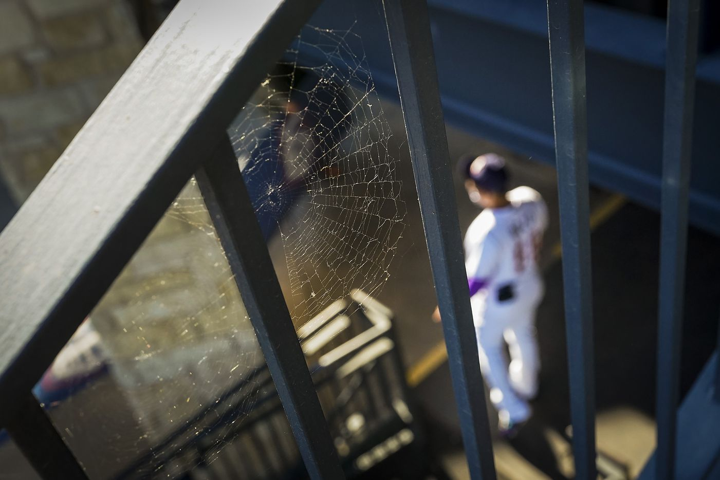 A spiderweb is seen on a railing as Round Rock Express catcher Yohel Pozo prepares to take the field at Dell Diamond for the Round Rock Express season opener against the Oklahoma City Dodgers on Thursday, May 6, 2021, in Round Rock, Texas. It was the first gamer for the Express in 601 days due to the COVID-19 pandemic.