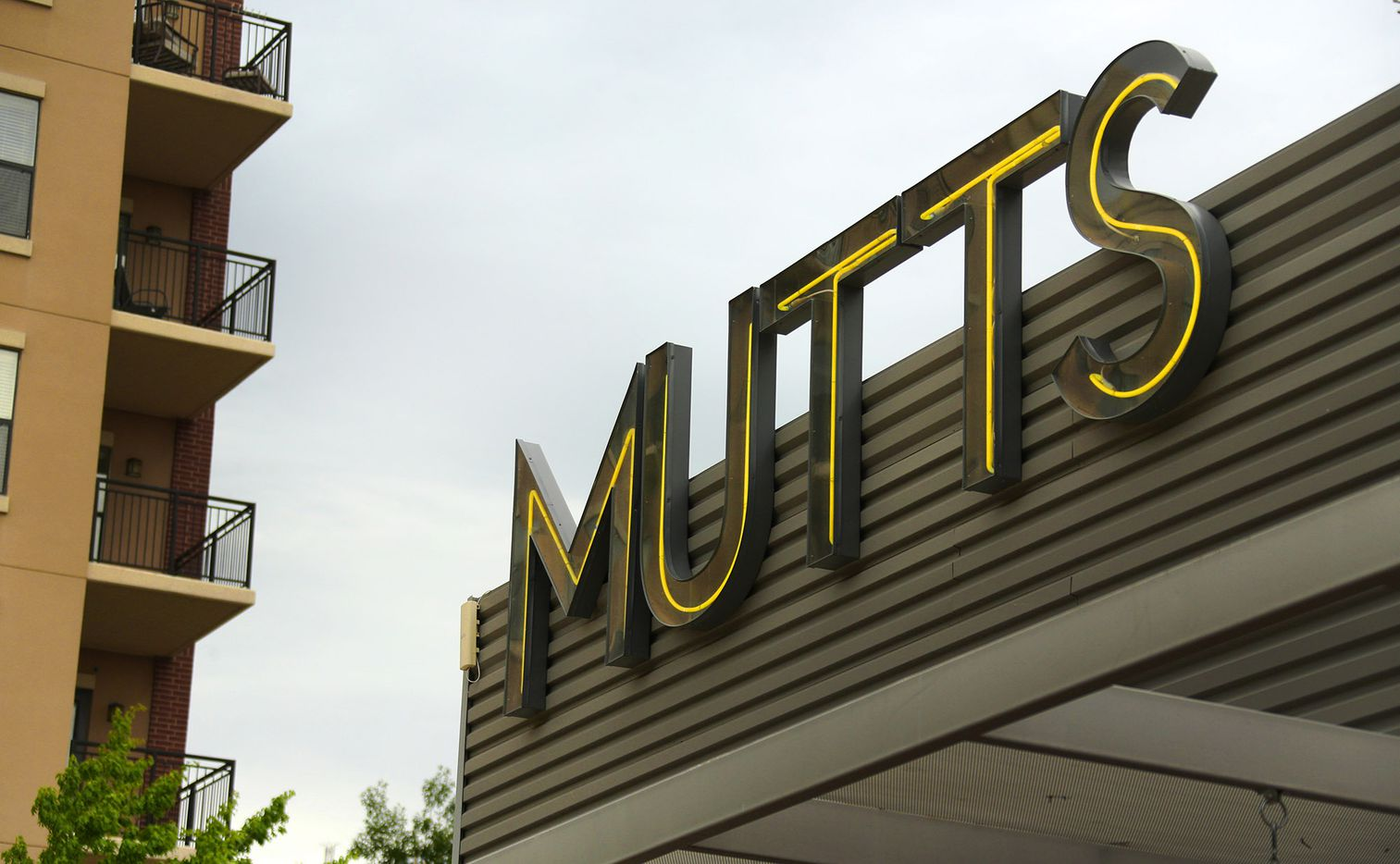 The sign at Mutts Canine Cantina in Uptown, just outside of downtown Dallas, photographed on Saturday, April 1, 2017.