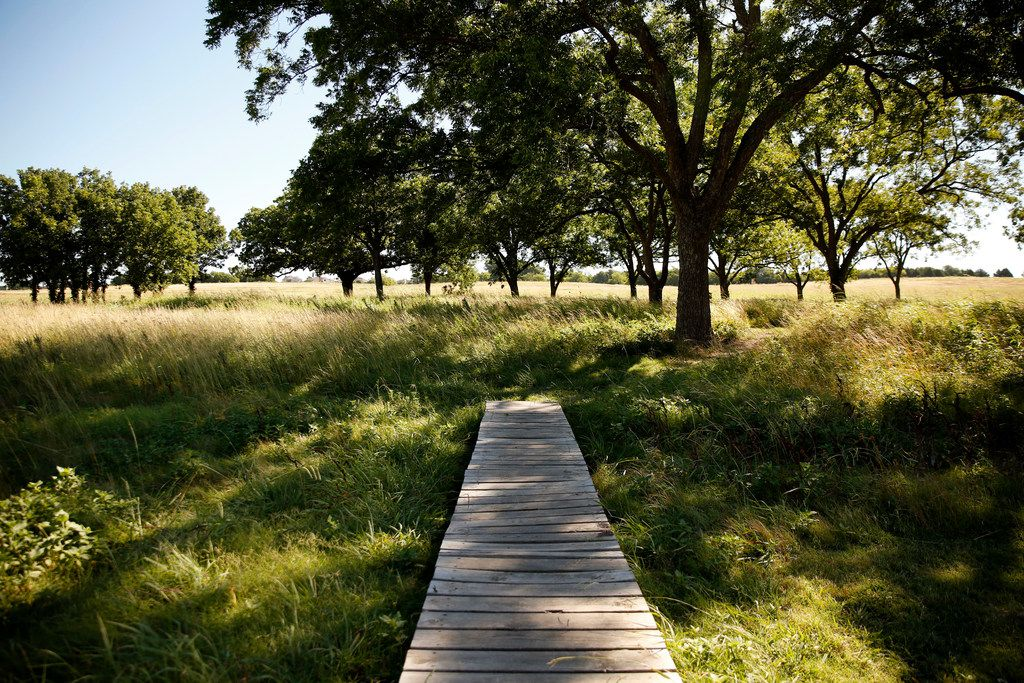 A bridge leads to the meadow trails at Oak Point Park and Nature Preserve in Plano.