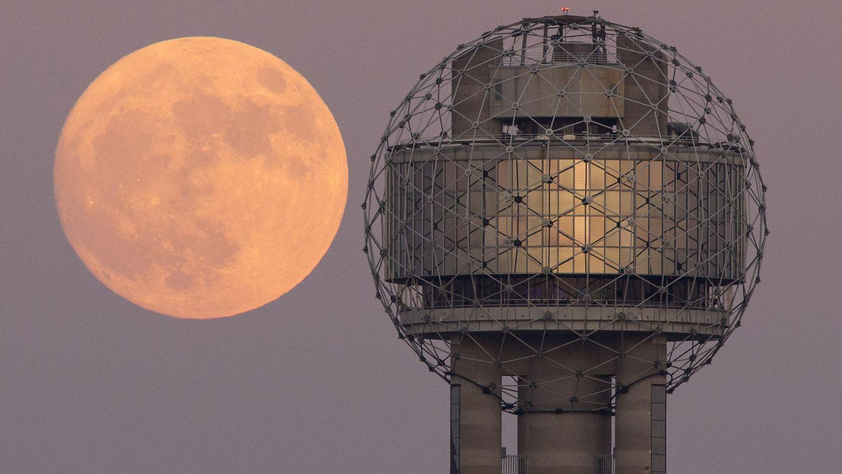 Imagen de la luna llena tomada en noviembre del 2016 en el centro de Dallas. (DMN/TOM FOX)