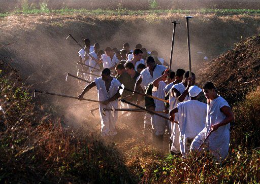 Inmates who are in the 'Youthful Offender Program' are identifiable by their cut-off sleeves as they clear out a ditch on prison property outside the Clemens Unit in Brazoria on Dec. 5 1999.