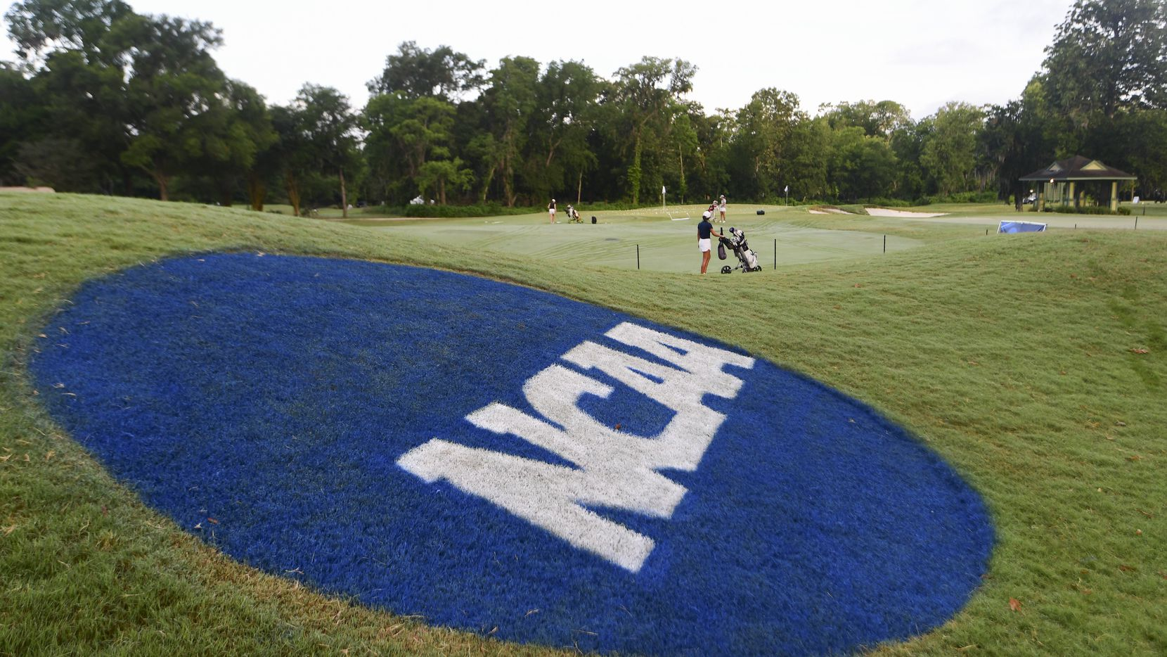 The Division III Women's Golf Championship held at the Bay Oaks Country Club on May 17, 2019 in Houston, Texas.