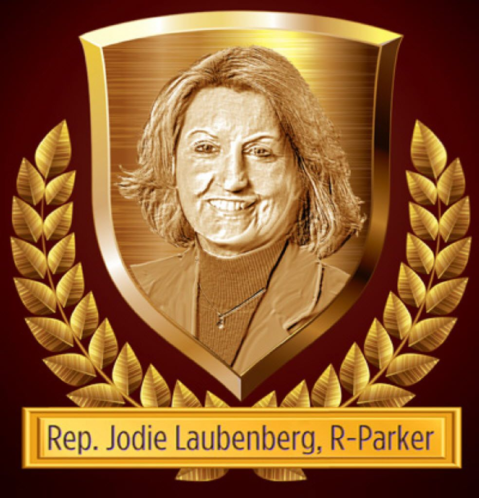 Rep. Laubenberg proved herself to be one of the state's top privacy advocates.