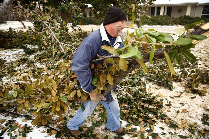 Steve Cole removed broken magnolia tree branches from his front yard on Saturday.