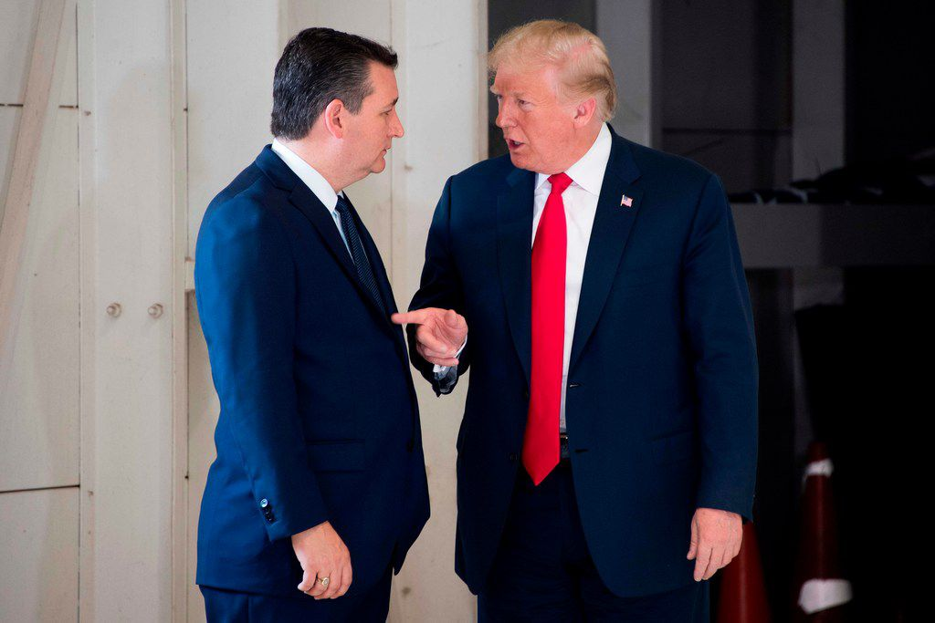 Sen. Ted Cru, R-Texas, spoke with President Donald Trump at Ellington Field Joint Reserve Base in Houston on May 31, 2018. / AFP PHOTO / JIM WATSONJIM WATSON/AFP/Getty Images