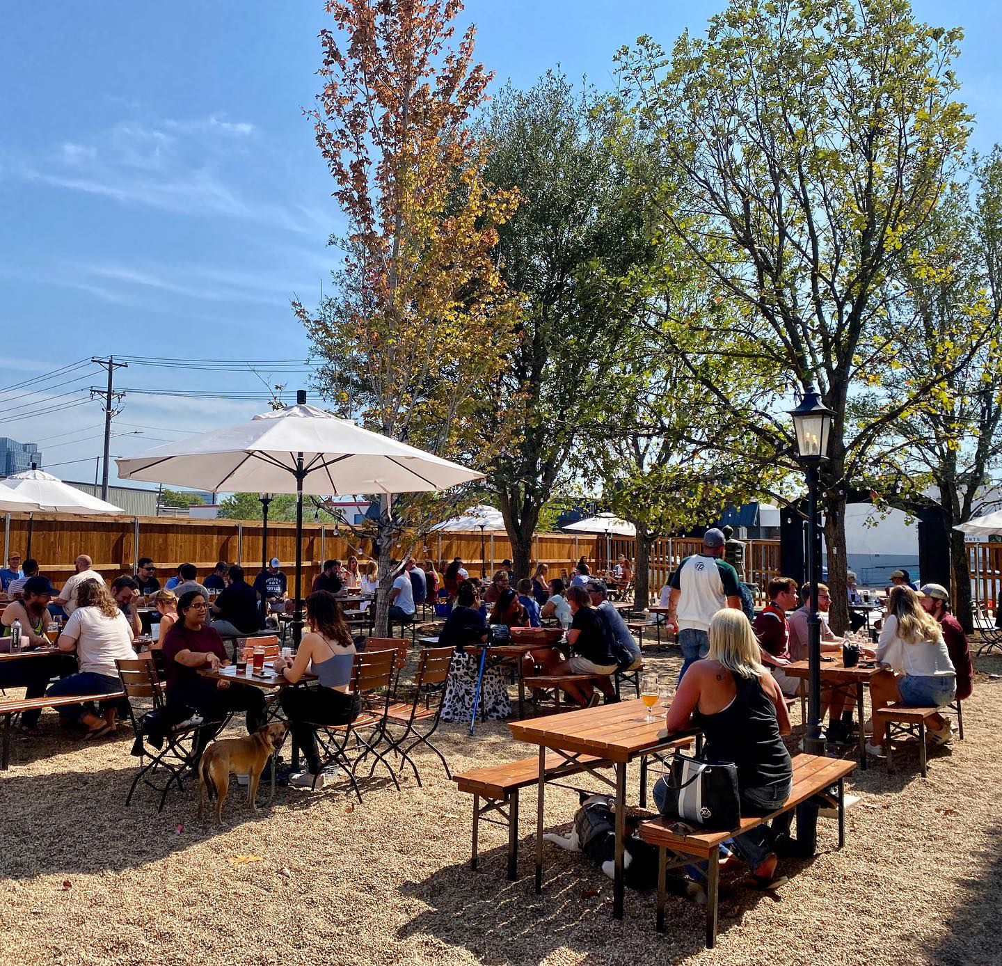 Maple Branch Craft Brewery in Fort Worth has a large biergarten patio.
