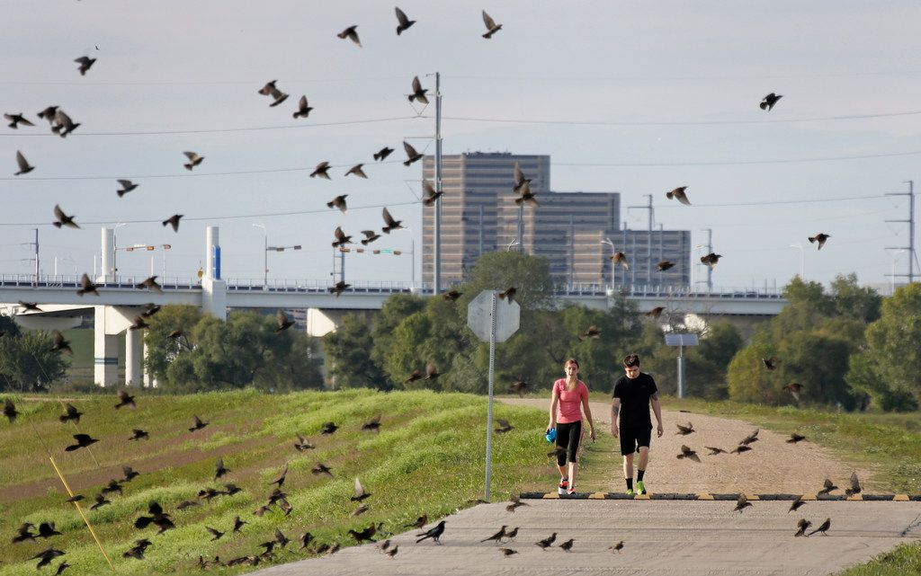 Britt Heid and David Griffin make their way along a path on the levee off of Canada Drive in West Dallas, part of the bicycle trail project that has been fully funded but not yet completed,