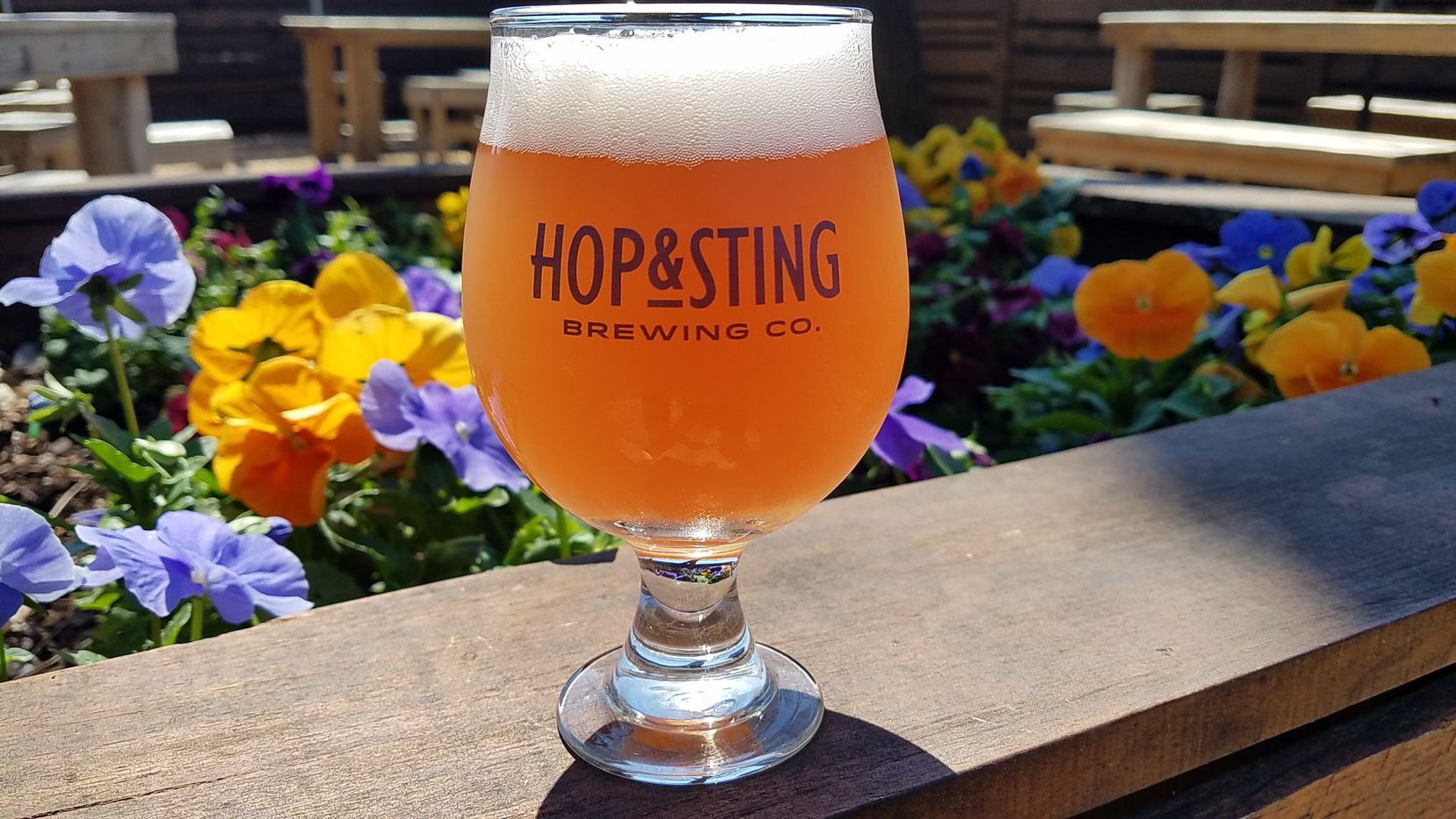 Hop & Sting Brewing Co. in Grapevine, Texas, wants GameStop employees to stop in for a cheap beer.