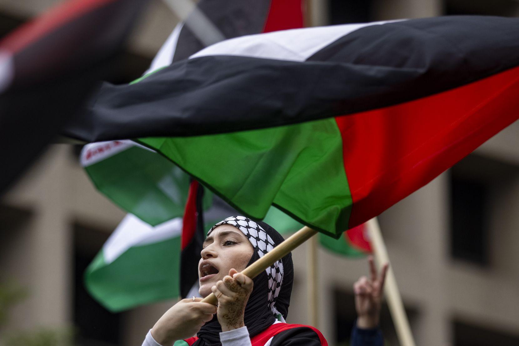 Najah Hamdan brought a Palestinian flag for the rally.