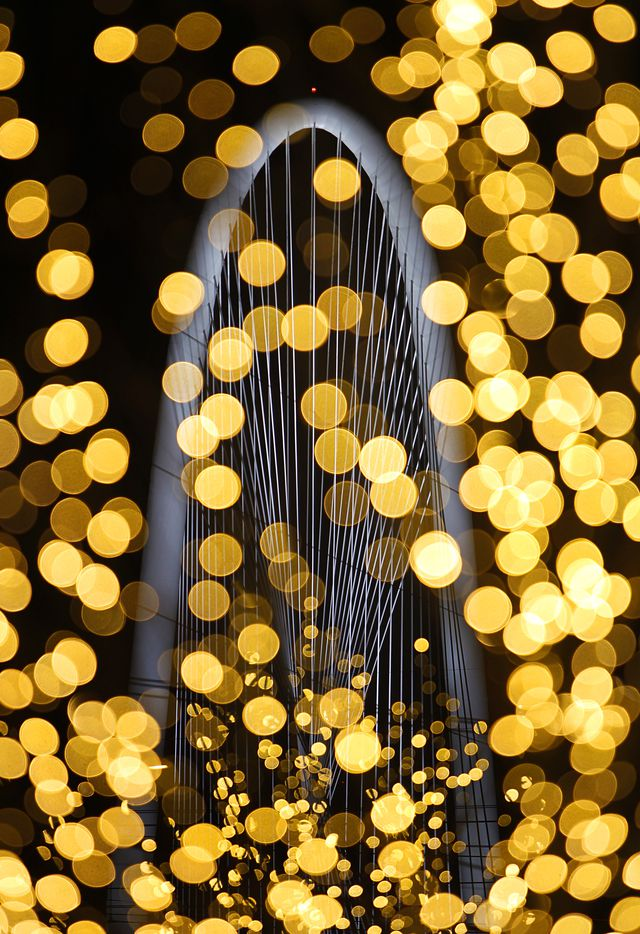 The Margaret Hunt Hill Bridge in Dallas is juxtaposed with twinkling lights on nearby densly lit trees, March 2, 2012, before opening-night festivities which included a concert by Lyle Lovett.  (Tom Fox/The Dallas Morning News)