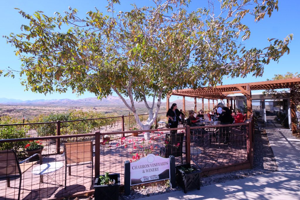Charron is one of the closest wineries to downtown Tucson and has a fantastic patio.