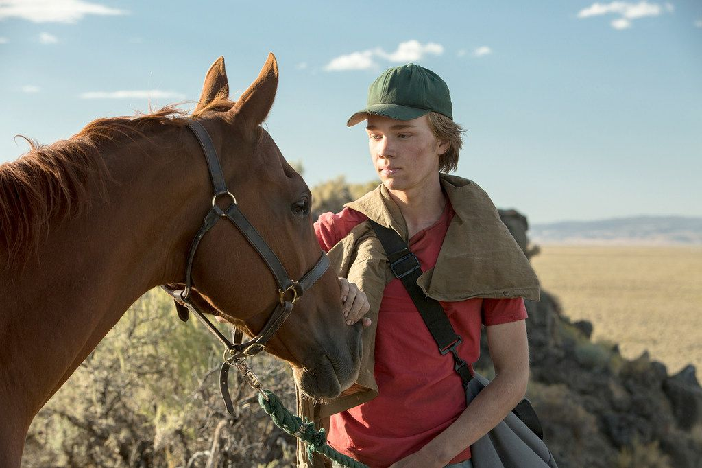 "A boy and his horse: Charlie Plummer and friend in ""Lean on Pete."""