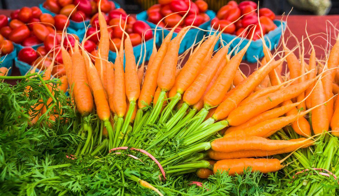 Zanahorias y tomates de la granja.