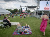 Music fans wait on the first band to take the stage at the Taste Addison in 2019.