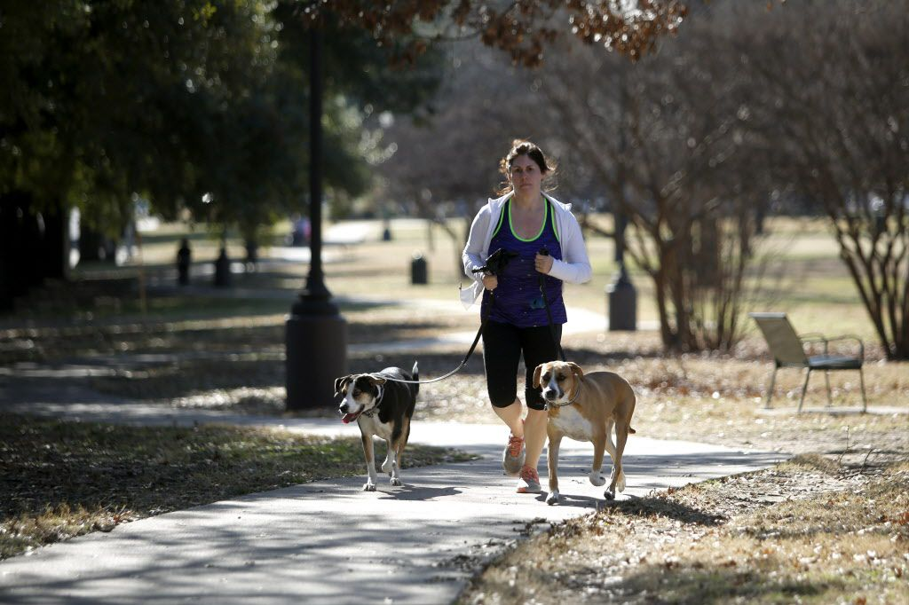 Audrey Keech takes advantage of the unseasonably warm weather to jog around Exall Park with her mutts, Lucy, left, and Chloe in East Dallas. Keech, who lives near the park, said she usually walks daily but is trying to get into running more often.