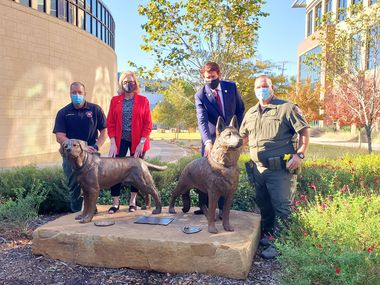 Arlington Fire Marshal Darin Niederhaus (far left) and Arlington Police K9 Officer Vince Ramsour (far right) stand behind the new statues memorializing their former service dogs Brickman and Mojo along with City Council Member Sheri Capehart and Mayor Jeff Williams.