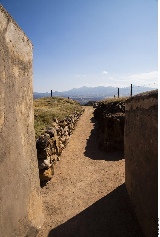 Que en tu equipaje no falten un buen par de tenis, ropa cómoda y bloqueador solar. Indispensables para realizar una travesía por algunos de sus Pueblos Mágicos, zonas arqueológicas y parques recreativos en Zacatecas.