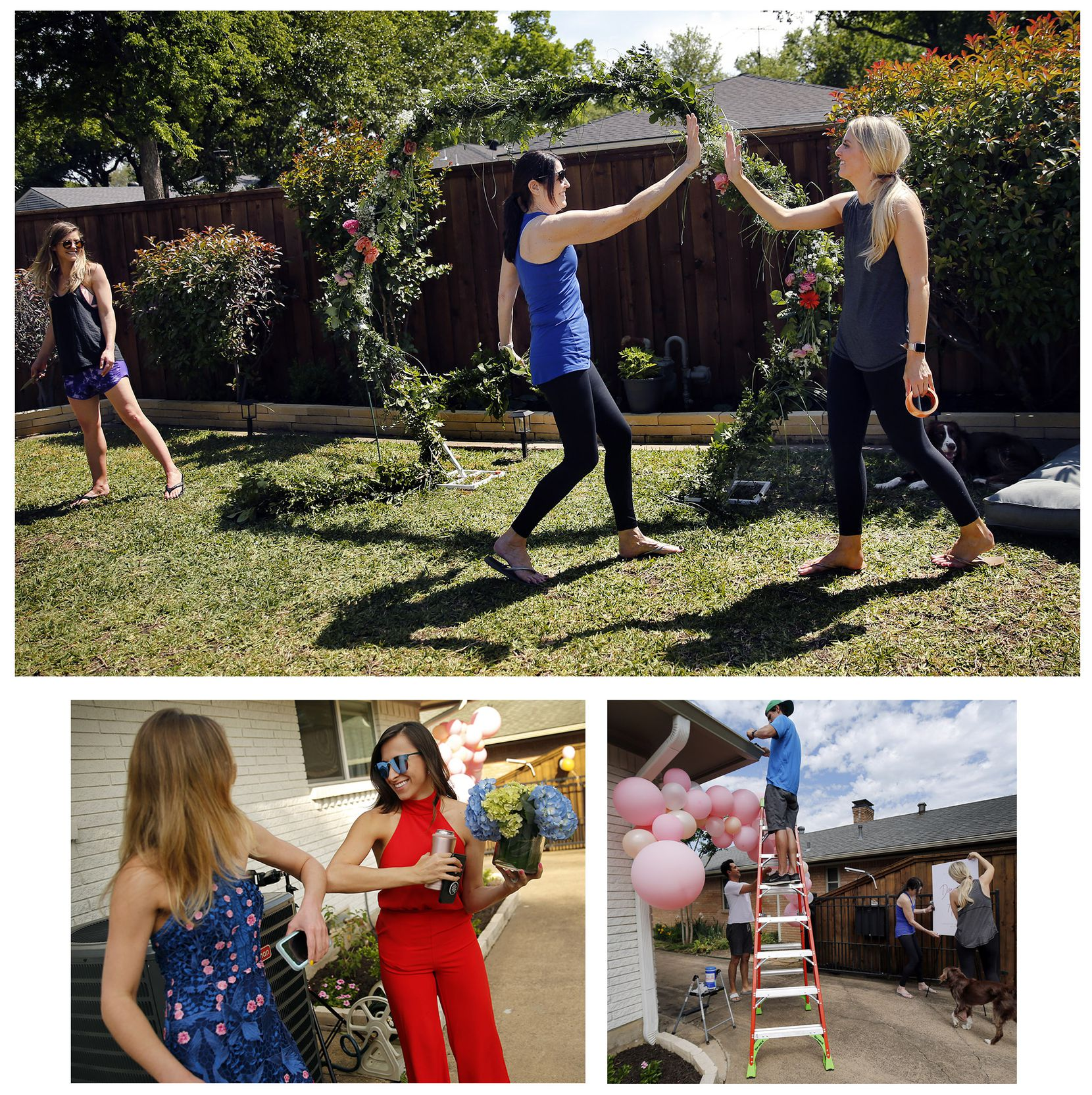 Clockwise from top, Carol Striph (center) gives her daughter, Dana Striph, a high-five after constructing an arch for their backyard wedding in northeast Dallas on Saturday, April 25, 2020. Joining them was a friend, Ashley Morgan.  Shortly thereafter, a large gust of wind blew over the arch, damaging it. As a solution, they hung the arch from the fence.  With the help of friends and family, Dana Striph (right) and her fiance, Andrew Houshian (on ladder), decorate the driveway entrance to their backyard. Ashley Morgan (left) gives the bride's sister Hannah Marshall an elbow touch greeting as she arrives for the wedding.