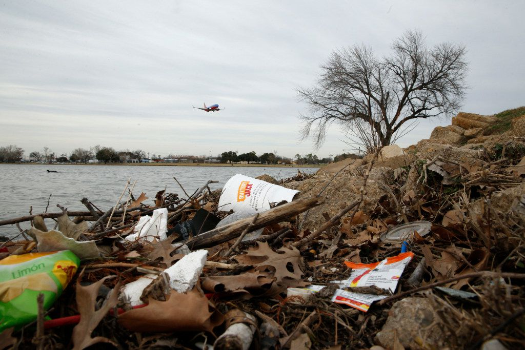 Trash on the shoreline at Bachman Lake. The real trouble lies, mostly hidden, at the center of the lake.