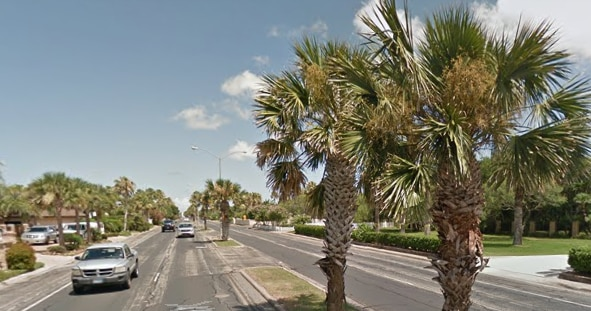 Palm trees line Ocean Drive in Corpus Christi. (Google Maps)
