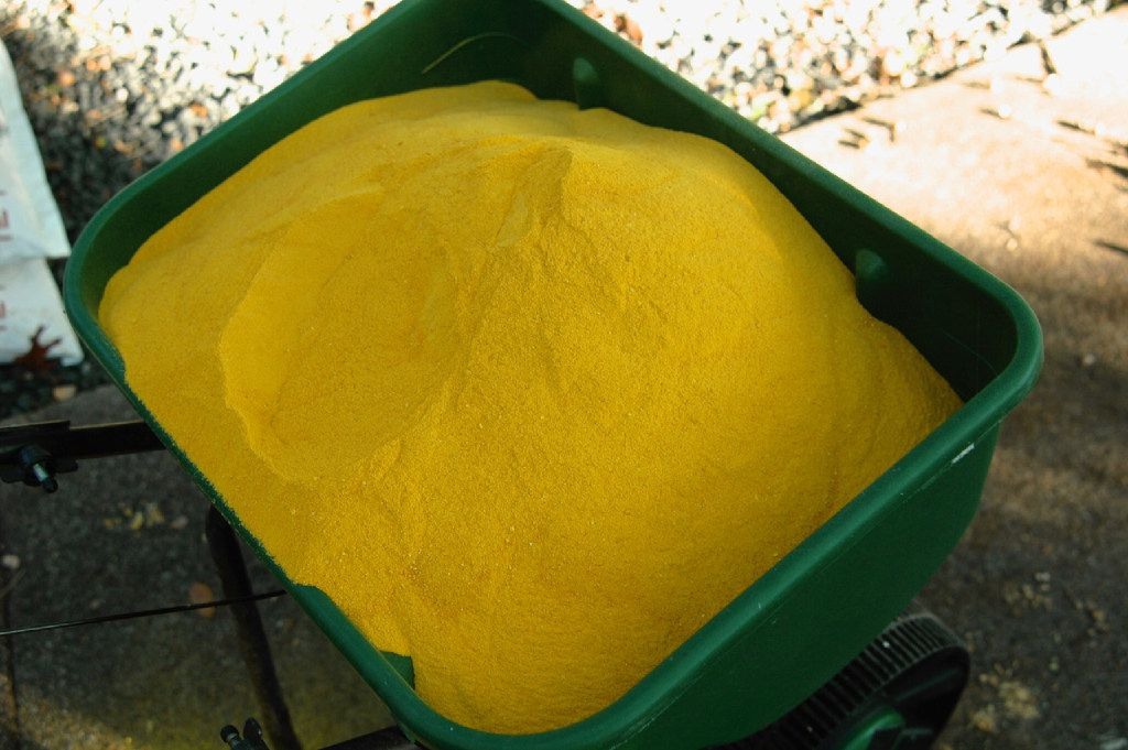 Corn gluten meal in meal form is most effective at controlling weeds, but it's dusty.