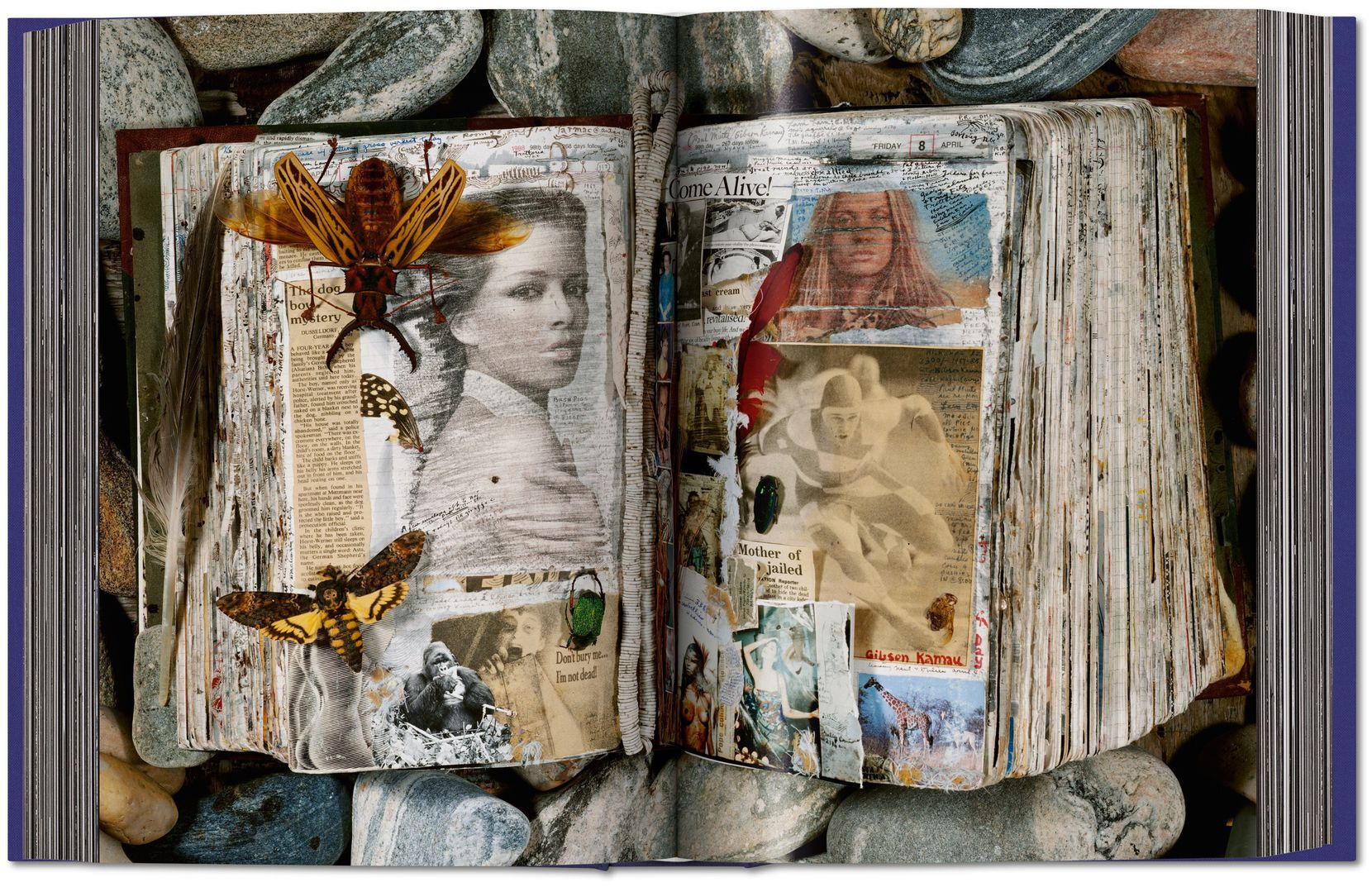 A spread from the book 'Peter Beard,' published by Taschen, showing his work.