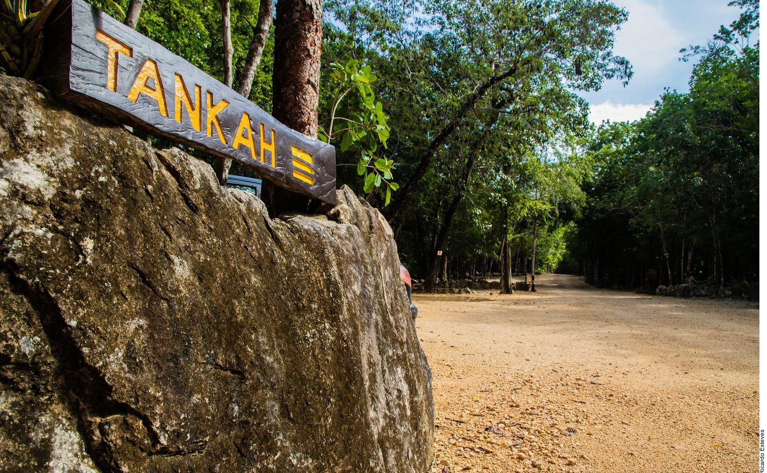 Al catálogo de divertimento en Tulum, Quintana Roo, se ha sumado un imperdible: la reserva natural de Tankah, ubicada a unos 20 minutos del centro.