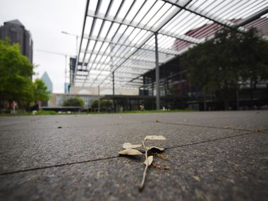 The reflecting pool at Sammons Park outside the Winspear Opera House is now dry as all buildings at the AT&T Performing Arts Center complex are closed due to COVID-19, Saturday afternoon March 21, 2020 in Dallas. Ben Torres/Special Contributor