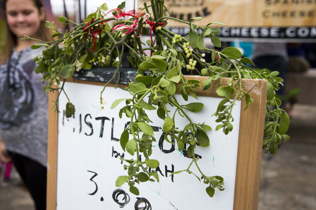 Mistletoe for sale at a booth during the 7th Annual Good Local Markets Holiday Extravaganza at Lakeside Baptist Church Dec. 12, 2015, in Dallas.