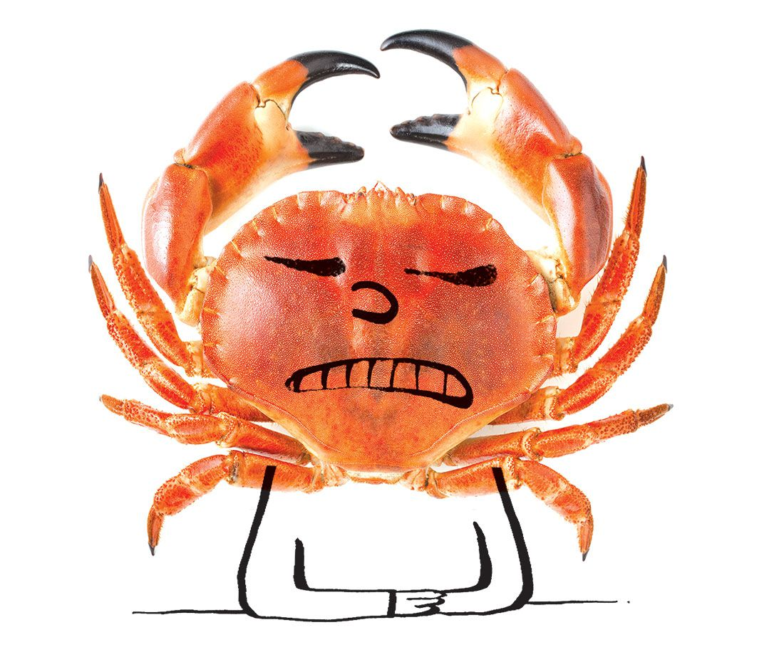 It's OK to be crabby from time to time.