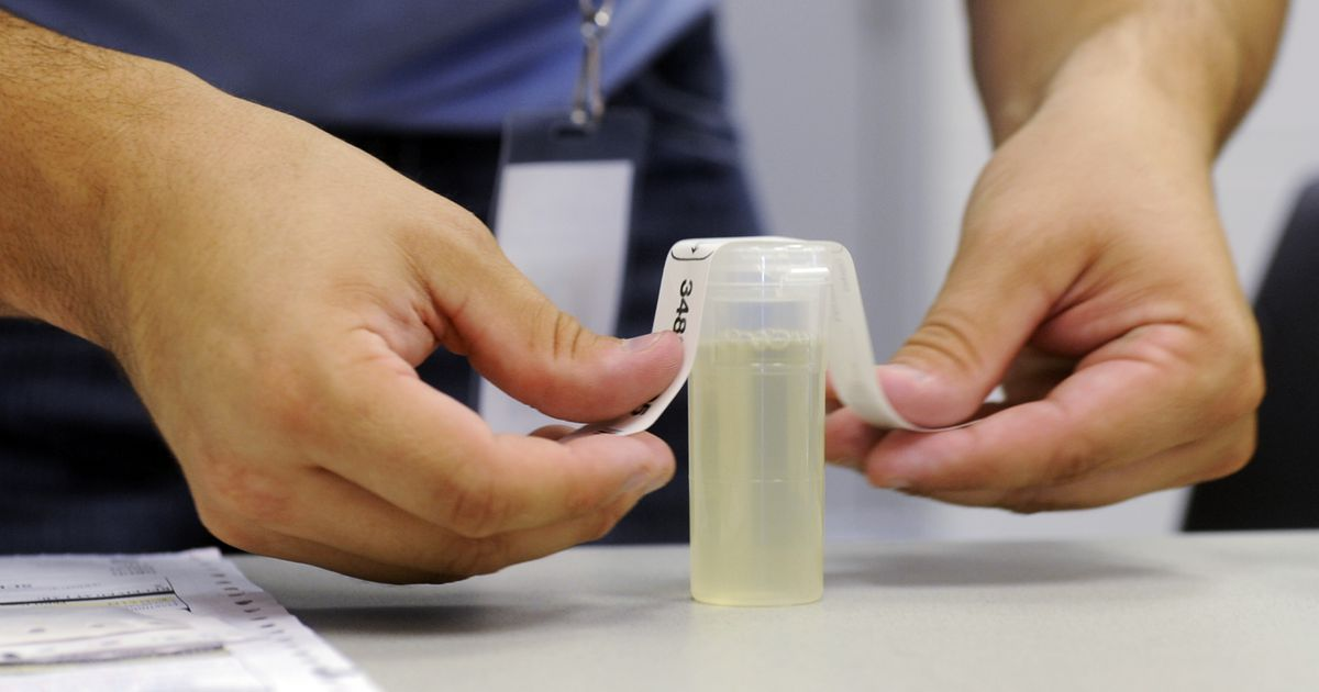 how to pass a steroid drug test