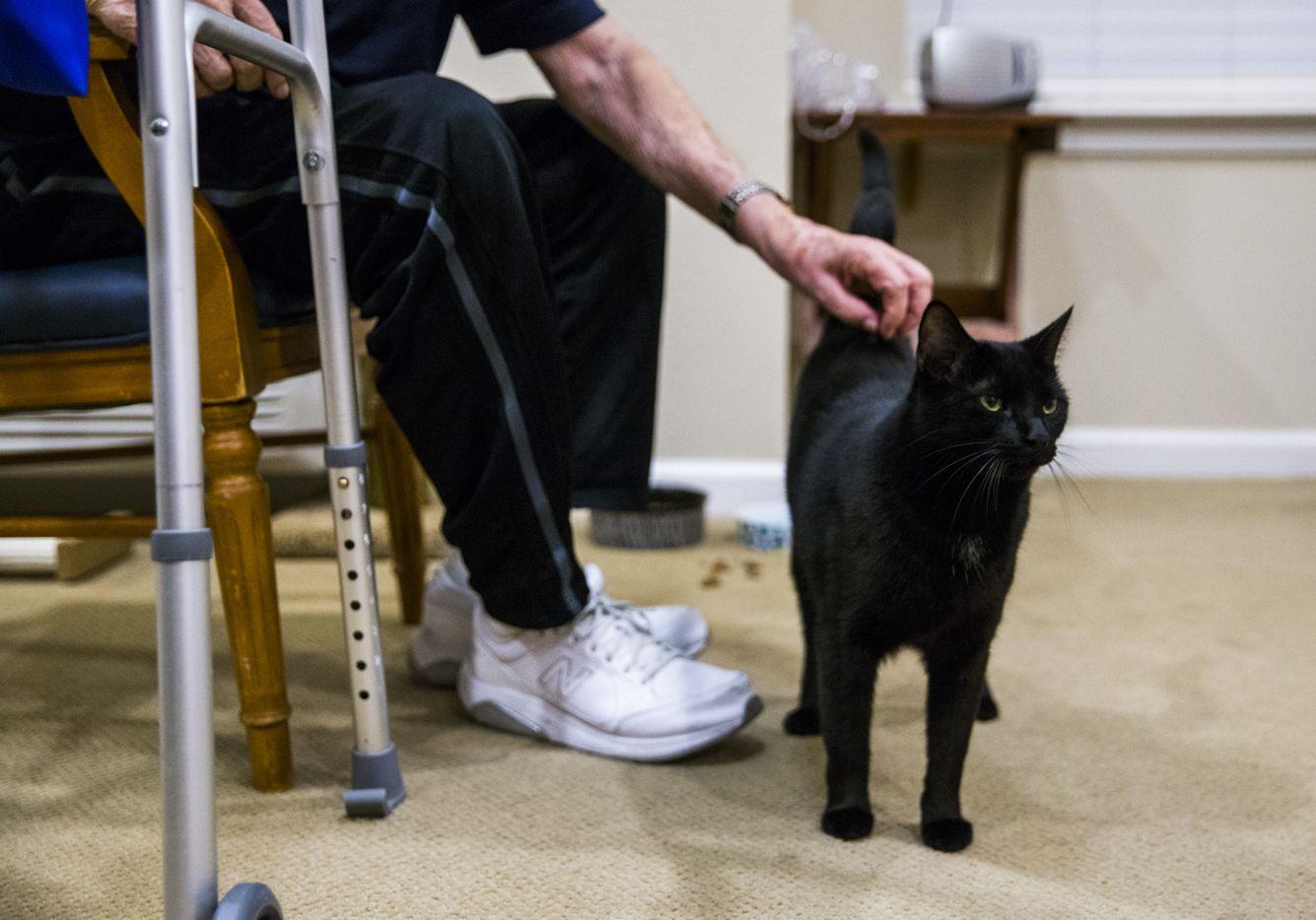 Bob Stiegler scratches Sammy the cat in his wife's room.