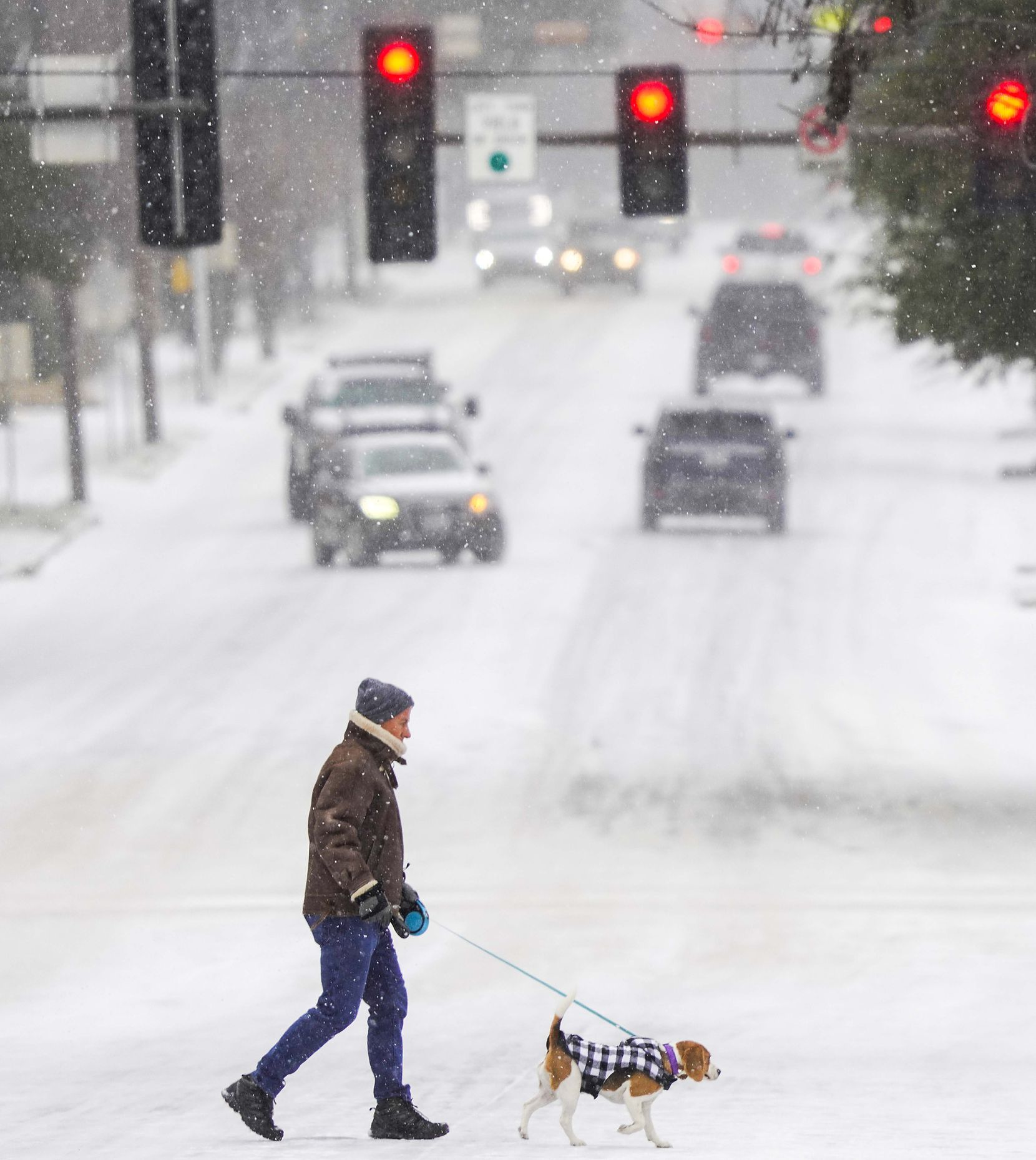 A man walks his dog across Hillcrest near Lovers lane as a winter storm brings snow and freezing temperatures to North Texas on Sunday, Feb. 14, 2021, in University Park.  A winter storm watch has been issued for all of North Texas, including Dallas, Denton, Collin and Tarrant counties and will be in effect from late Saturday through Monday afternoon.