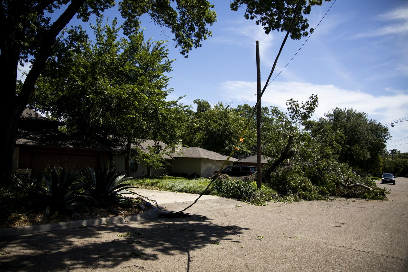A power line is down, along with trees, near Coldwater Circle and Estacodo Drive in Dallas on Monday.