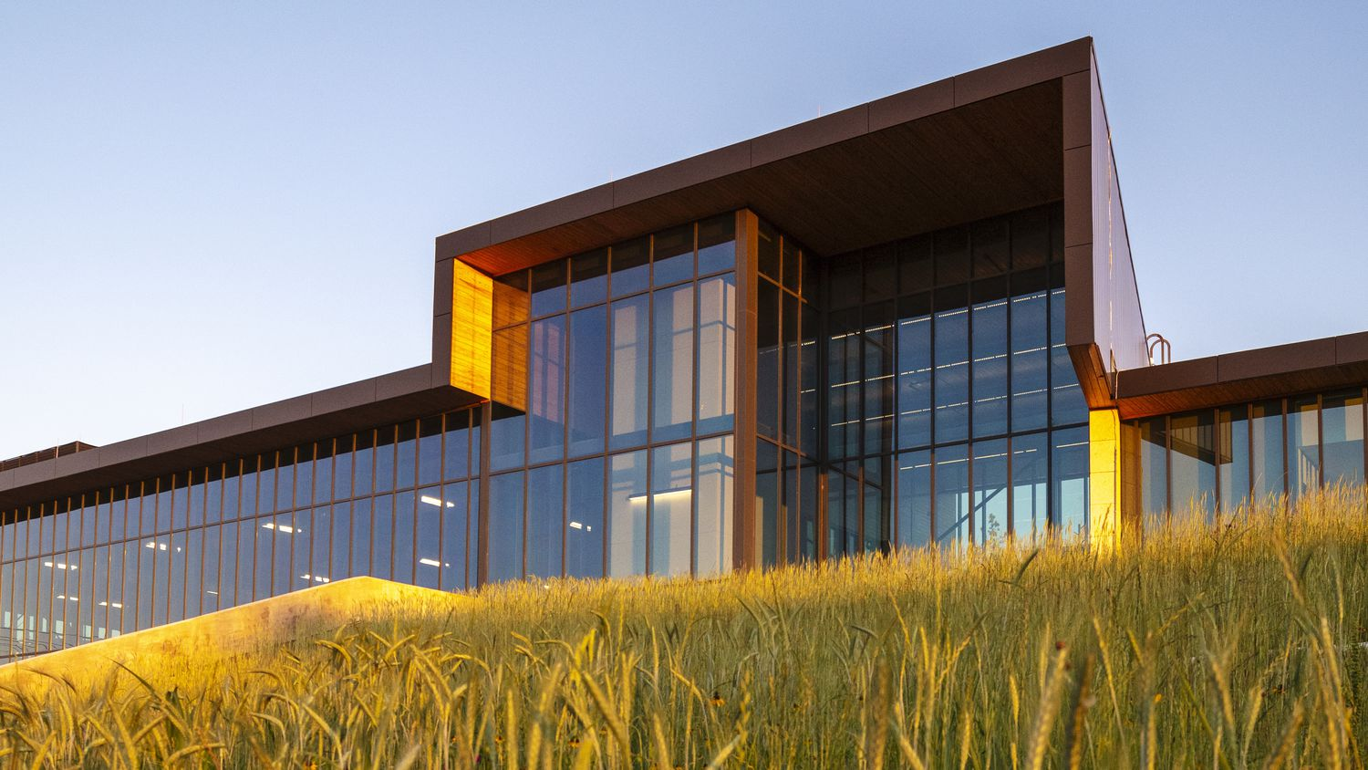 A view of the windows and columns on the back portion of The Singing Hills Recreation Center in far south Dallas.