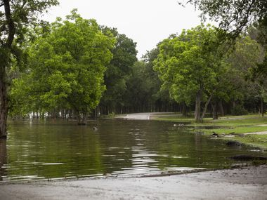 The flooded Camp Site B road at Loyd Park on Friday, May 28, 2021, in Grand Prairie.