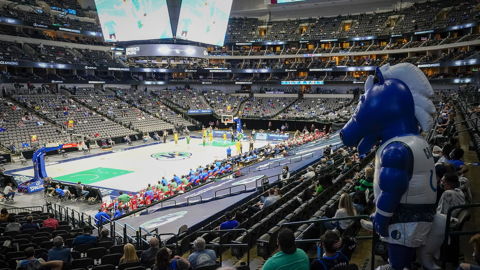 Dallas Mavericks mascot Champ watches from the stands during the second half of an NBA basketball game against the Indiana Pacers at American Airlines Center on Friday, March 26, 2021, in Dallas.