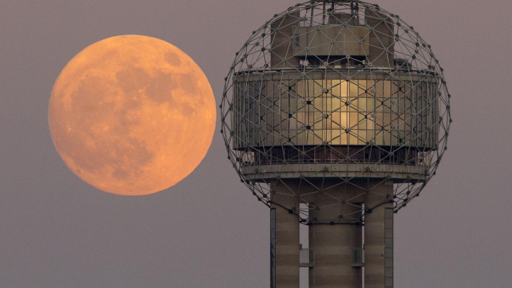 La Luna estará a 357,042 kilómetros (221,855 millas) de distancia en su mejor momento la noche del martes, lo que la hará verse más grande y brillante.
