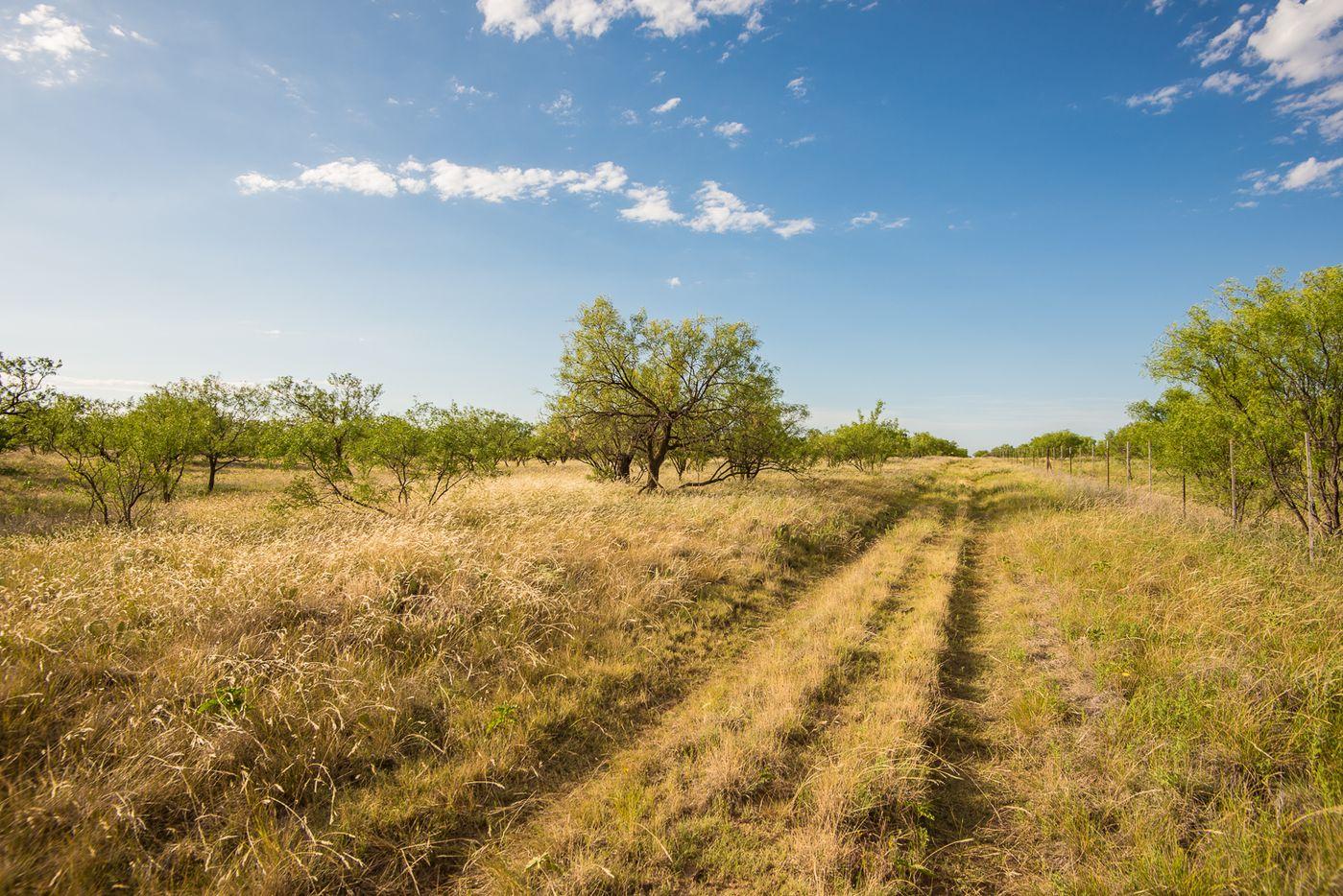 The Comanche Crest Ranch is near Throckmorton.