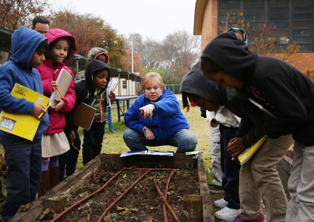 Dayle Henderson (center), a first grade teacher, instructs students in planting seeds in the John J. Pershing Elementary School garden in Dallas on Dec. 15, 2016. (Andy Jacobsohn/The Dallas Morning News)