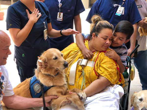 El Paso shooting survivors and their families got a visit from a group of comfort dogs, including two golden retrievers from North Texas.