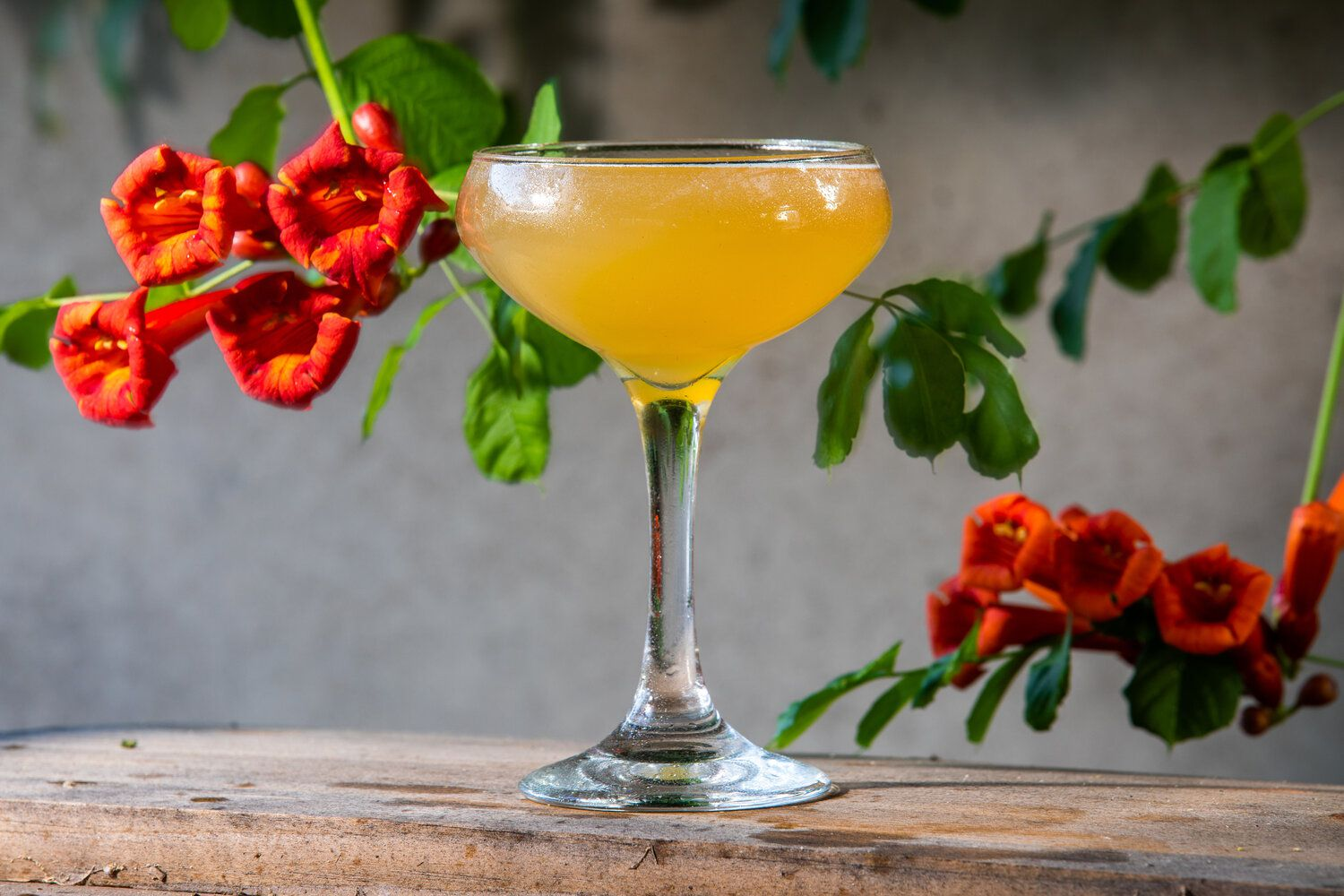 The Honeysuckle cocktail at Hurdy Gurdy is made with rum, lime juice, honey, egg white and bitters. Hurdy Gurdy is expected to open in October 2020.