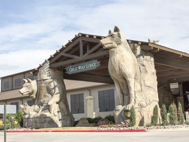 Grapevine police are looking for the public's help regarding an accident which severely injured a 4-year-old guest at Great Wolf Lodge on April 10.