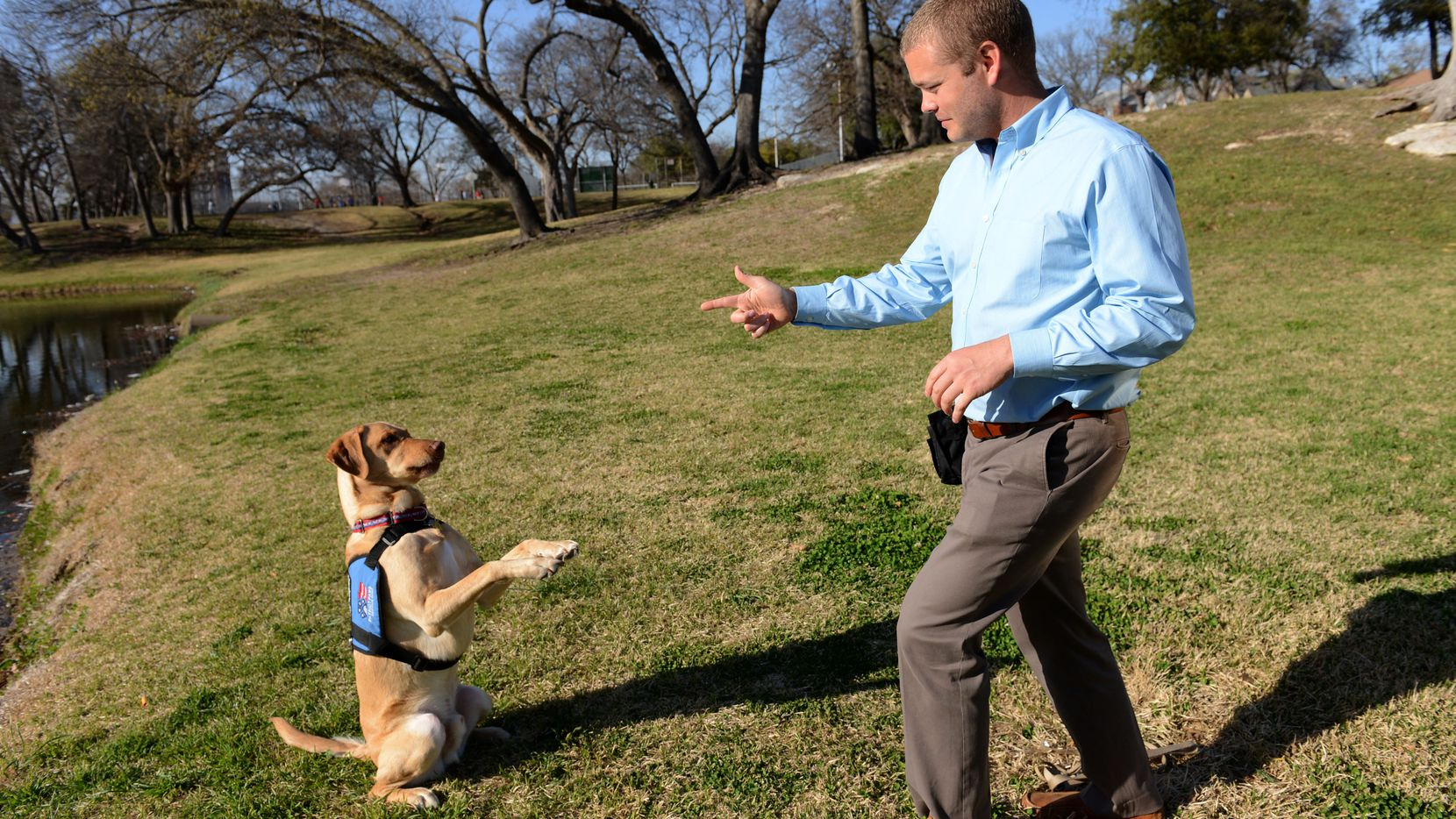 """Dustin Deweerd does the """"stick 'em up"""" trick with his 3-year-old Labrador service dog Gunny, at Lake Cliff Park on March 20, 2014 in Dallas. Gunny helps Deweerd, a U.S. Army veteran, cope with his Post Traumatic Stress Syndrome after serving in Irag and Afghanistan for two years."""