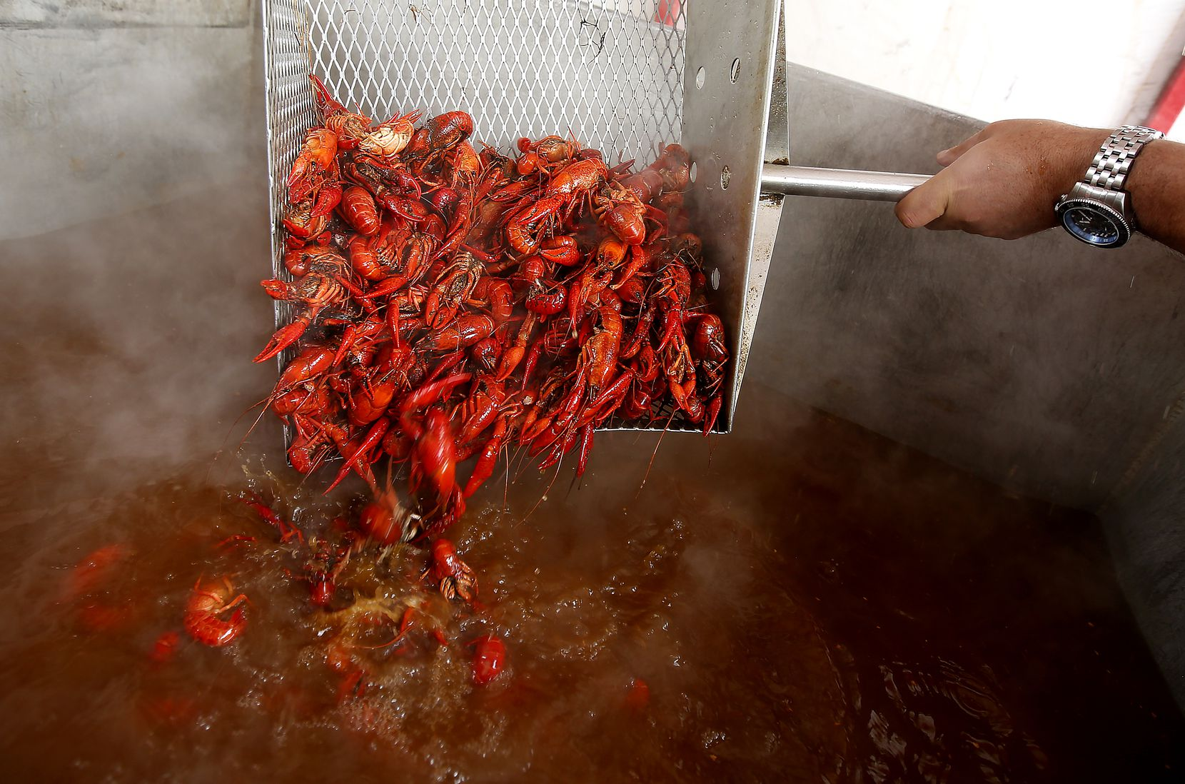 Crawfish are boiled during the 2nd Annual Frisco Crawfish Festival called Claws for Paws which benefits Habitat4Paws.org at Rockin S Bar & Grill in Frisco, Texas, Sunday, April 2, 2016. (Anja Schlein/Special Contributor)