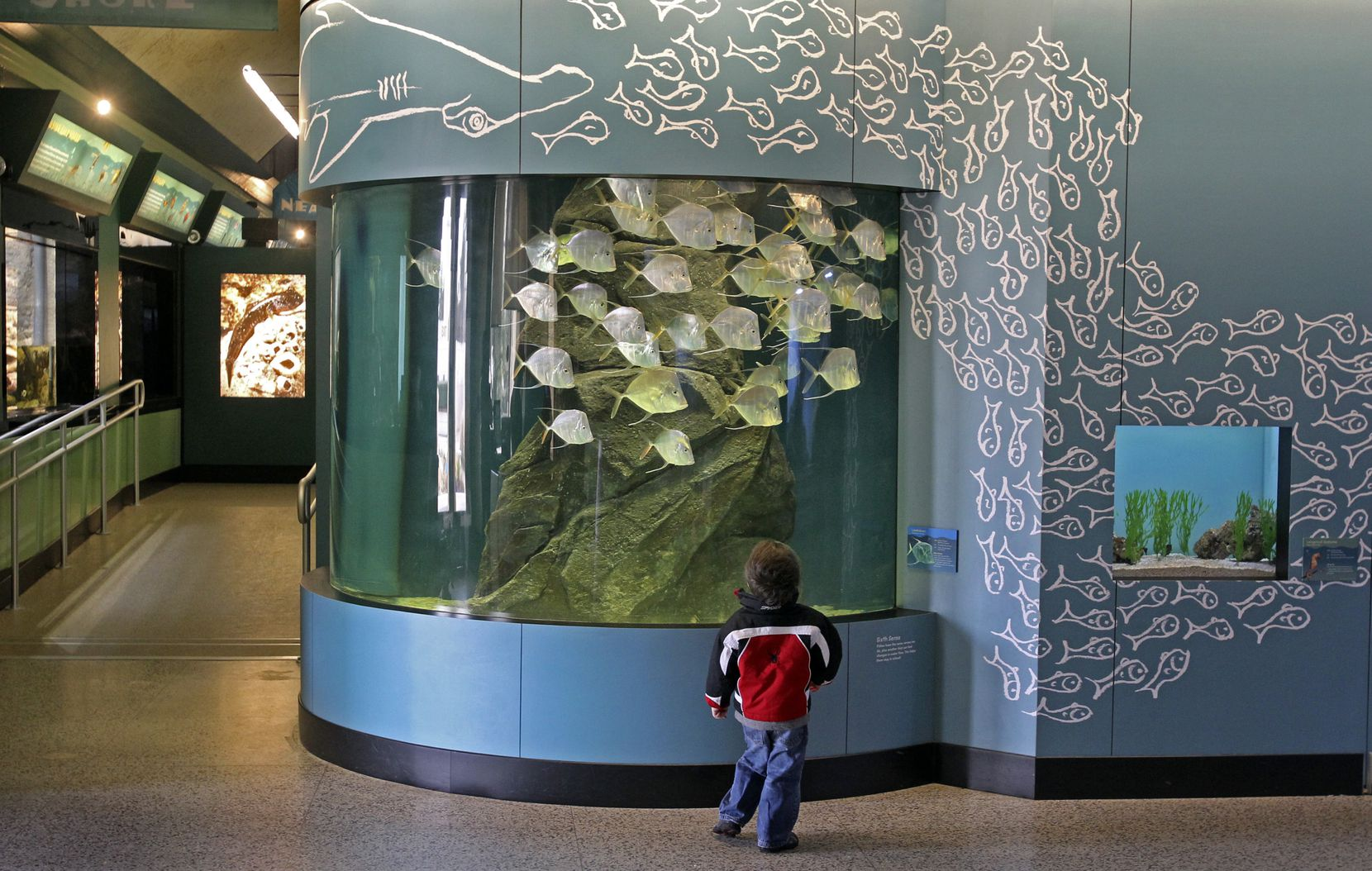 La ciudad anunció el cierre definitivo del Children's Aquarium en Fair Park