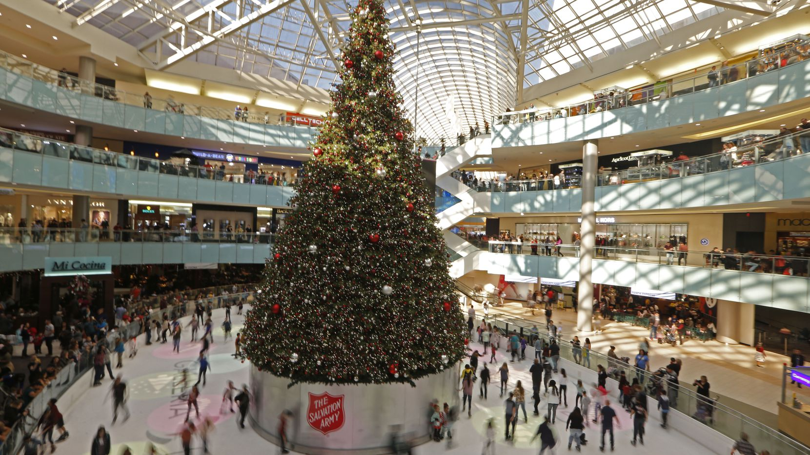 2020 Biggest Christmas Tree In Dallas Fort Worth The top places to see Christmas lights and other holiday displays