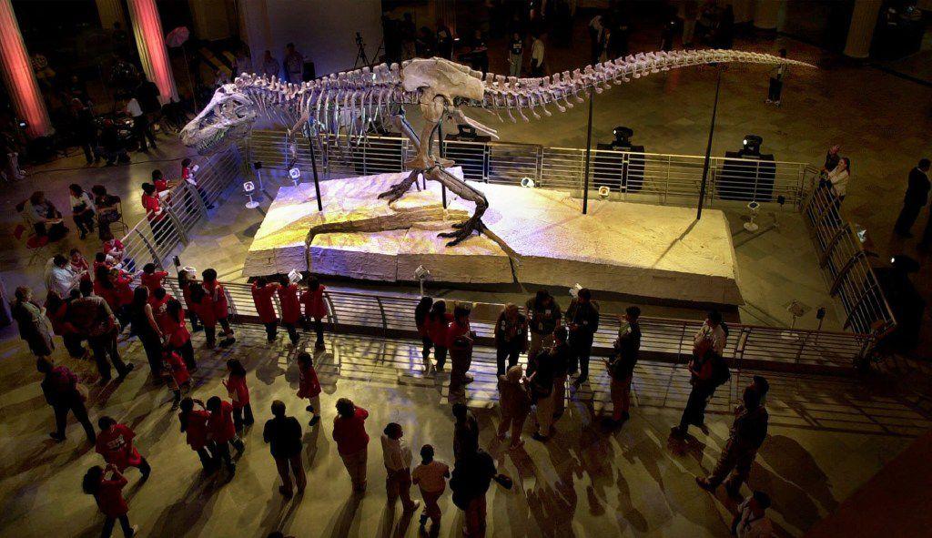 Una foto de Sue, el más grande y más completo esqueleto de Tyrannosaurus rex que se ha encontrado, en exposición pública en el Museo Field de Historia Natural en Chicago. (ARCHIVO/AP)