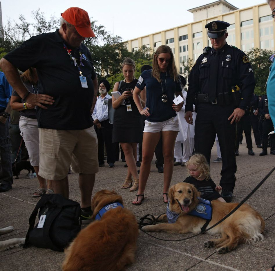 Senior Cpl. Daniel Sullivan with his daughter Sofia, 2 and wife Brandi, watch as Tim Hetzner president  Luthrean Christan Church offers his dogs to be pet during a candlelight vigil hosted by the Dallas Police Association at Dallas City hall in Dallas, TX July 11, 2016. (Nathan Hunsinger/The Dallas Morning News)