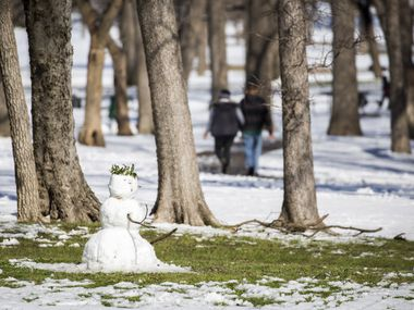 Grass starts to be exposed around a snowman in Tenison Park as warmer afternoon temperatures melt away a record snowfall on March 5, 2015. Dallas probably won't see any snow like this in the first week of January 2017.